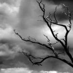 Seasonal Affective Disorder – How Weather Can Effect Your Mood